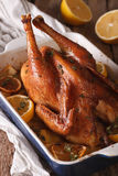 Whole chicken with lemon baked in a baking dish closeup. Vertica Royalty Free Stock Photography