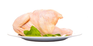 Whole Chicken Meat VI Royalty Free Stock Photography
