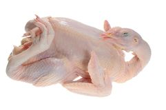 Whole Chicken Ready For Cooking Stock Photography