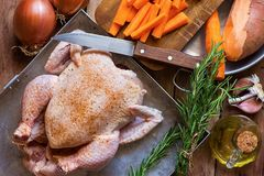 Whole Chicken Seasoned Uncooked Chopped Vegetables Carrots Yams Onions in Baking Form Rosemary Twigs Olive Oil on Kitchen Table Stock Images