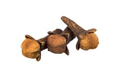 Whole clove Stock Photography