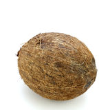 Whole Coconut. One exotic, raw, whole, husked tropical nut on white Royalty Free Stock Image