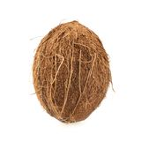 Whole coconut fruit isolated Royalty Free Stock Photo