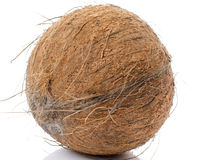Whole coconut Stock Photos