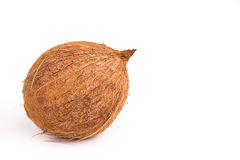 Whole coconut,  Royalty Free Stock Photography