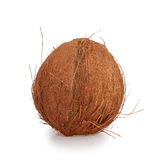 Whole coconut Royalty Free Stock Photo