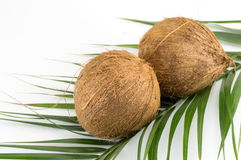 Whole coconuts on coconut leaves on white Stock Photo
