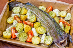 Whole cod with vegetables Royalty Free Stock Image