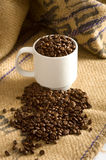 Whole Coffee Beans in Cup Stock Photo