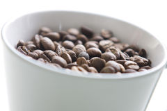 Whole coffee grains in a coffee cup Stock Images