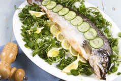 Whole cooked salmon. A whole cooked salmon on a bead of watercress Royalty Free Stock Photo