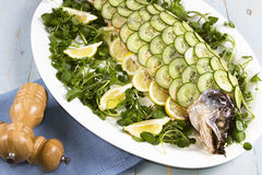 Whole cooked salmon. A whole cooked salmon on a bead of watercress Royalty Free Stock Photography