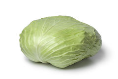 Whole coolwrap cabbage Stock Images