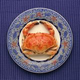 Whole crab on decorative plate Royalty Free Stock Images