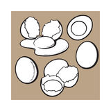 Whole and cracked, broken shell chicken egg composition. Sketch style vector illustration isolated on white background. Hand drawn raw, boiled and fried, whole Royalty Free Stock Photography