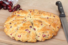 Whole Cranberrry Scone Stock Photography