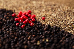Whole, crashed and ground black and red peppercorns Royalty Free Stock Photos