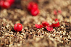 Whole, crashed and ground black and red peppercorns Stock Photography