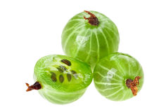 Whole and cross-section gooseberry fruit isolated Stock Photos