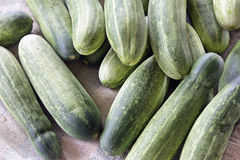 Whole Cucumbers Background Royalty Free Stock Photo