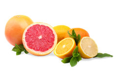 Whole and cut citrus fruits,  on a white background. Exotic and tropical grapefruits, oranges and lemon with leaves. Stock Photo