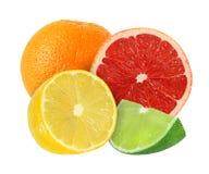 Whole and cut orange, grapefruit, lemon, lime fruits isolated Royalty Free Stock Photography