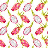 Whole dragon fruit and cut slice, seamless pattern design on white background. Whole dragon fruit and cut slice, seamless pattern design, hand painted watercolor Stock Photo