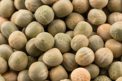 Whole dried green peas full frame Royalty Free Stock Images