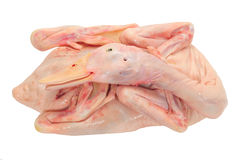 Whole Duck Ready For Cooking Royalty Free Stock Image