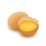 Whole egg and Broken egg shell with yolk. Vector,  on white Royalty Free Stock Photos