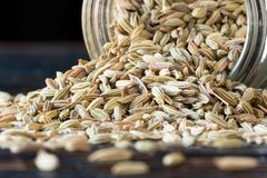 Fennel Seeds. Whole fennel seeds spilled from spice jar Royalty Free Stock Photos