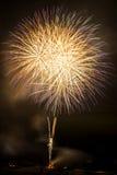 Whole of fireworks bursting Royalty Free Stock Image