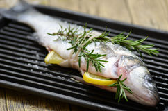 fresh fish on a grill Royalty Free Stock Image