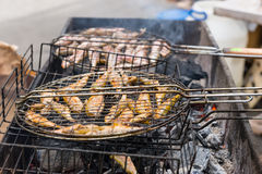 Whole Fish Cooking Over Hot Grill Coals Royalty Free Stock Photo