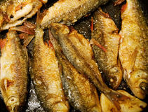 Whole fish frying Stock Images