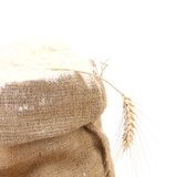 Whole flour in bag with wheat ears. Stock Image