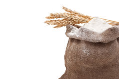 Whole flour with wheat ears Stock Image