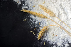Whole flour and wheat ears Royalty Free Stock Image