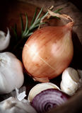 Brown onion with garlic Stock Photo