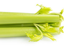Whole fresh celery Royalty Free Stock Image