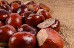 Whole fresh chestnuts Stock Photo