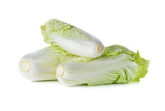 Whole fresh Chinese cabbage on white. Background Royalty Free Stock Image