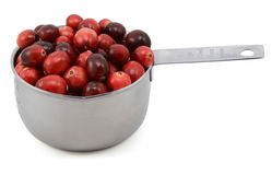 Whole fresh cranberries in a cup measure Stock Photo