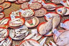 Whole fresh fishes are offered in the fish market Royalty Free Stock Photography