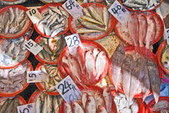 Whole fresh fishes are offered in the fish market Royalty Free Stock Photo