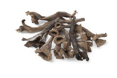 Whole fresh Horn of Plenty mushrooms Royalty Free Stock Photo