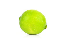 A whole fresh lime isolated on a white background Royalty Free Stock Photo