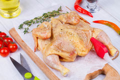 Whole fresh raw chicken prepared for roast with thyme, basil and tomatoes cherry.  Royalty Free Stock Image