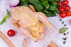 Whole fresh raw chicken prepared for roast with thyme, basil and tomatoes cherry.  Stock Photography