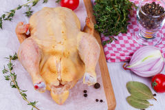 Whole fresh raw chicken prepared for roast with thyme, basil and tomatoes cherry Stock Photo